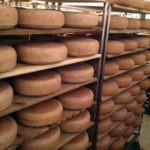 Racks of cheese at Uplands Cheese Company