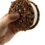 The Cocoa Pebbles Ice Cream Sandwich